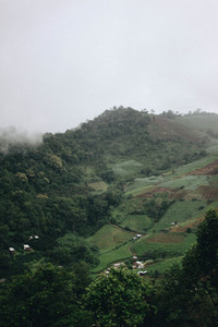 Mountain view  Mae Hia Farm