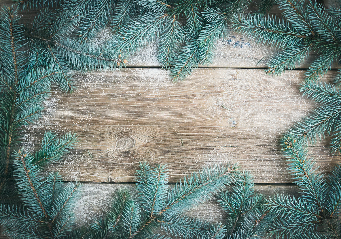 Christmas  New Year  theme background  a frame of fur tree branc