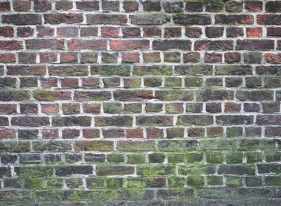 Colorful and mossy brick wall texture