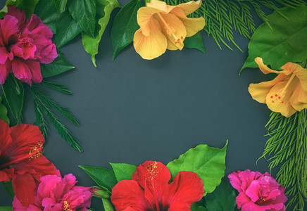 Frame of flowers  hibiscuses  dof roses  and green leaves o