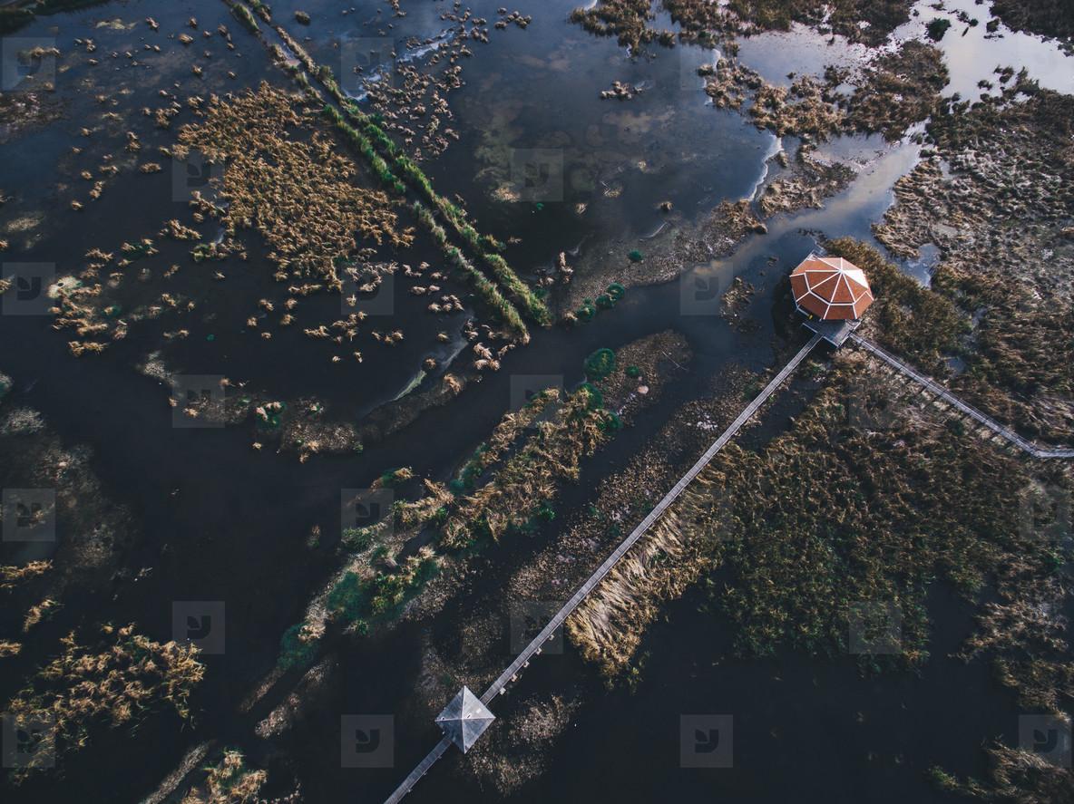Thai Wetlands