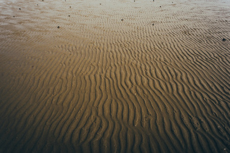 Beach Patterns 01