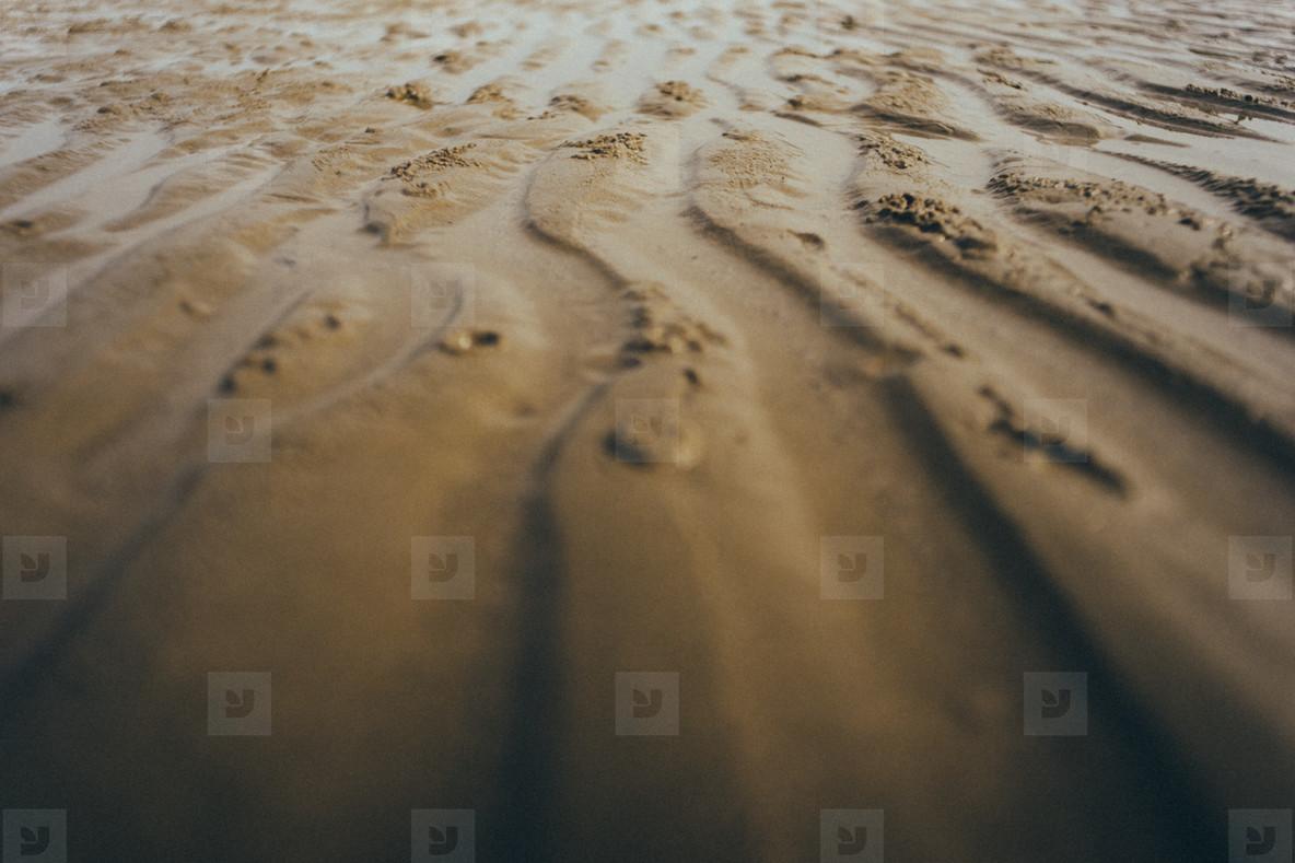 Beach Patterns 03