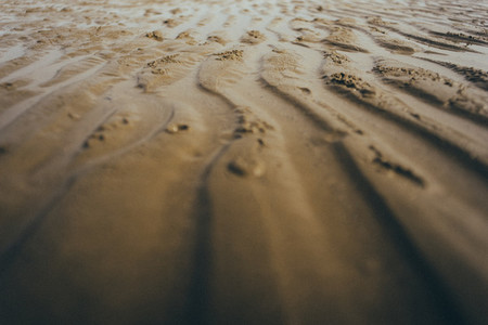 Beach Patterns 03