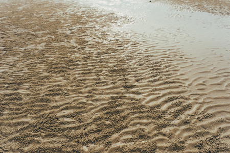 Beach Patterns 05