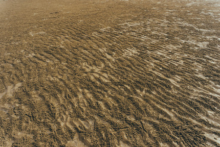 Beach Patterns 06