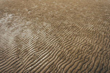 Beach Patterns 08