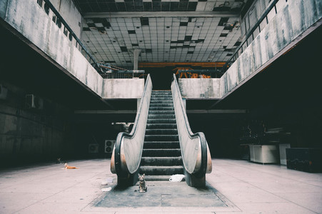 Damaged escalators