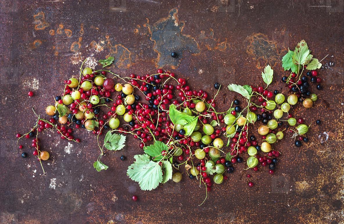 Summer berries on rusty grunge metal background  top view