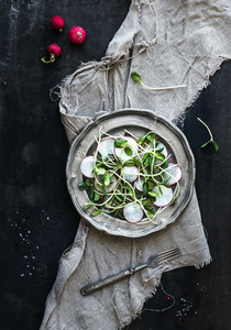 Spring salad with sunflower sprouts and radish in vintage metal plate over rustic dark painted background