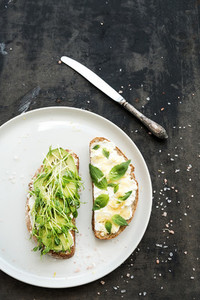 Avocado  ricotta  basil and sprout sandwiches on white ceramic plate over dark grunge backdrop  top view
