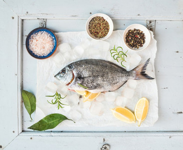 Fresh uncooked sea bream fish with lemon  herbs  ice and spices