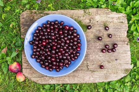 A bawl of fresh garden cherries