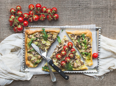 Ristic mushroom  fungi  square pizza with cherry tomatoes and ar