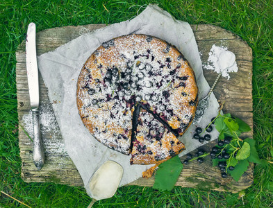 Blackberry pie on the grass