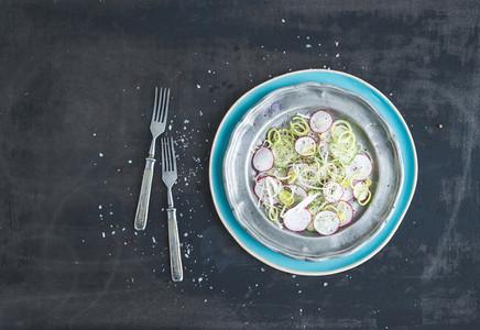 Spring salad with leek  radish and cucumber in vintage metal plate