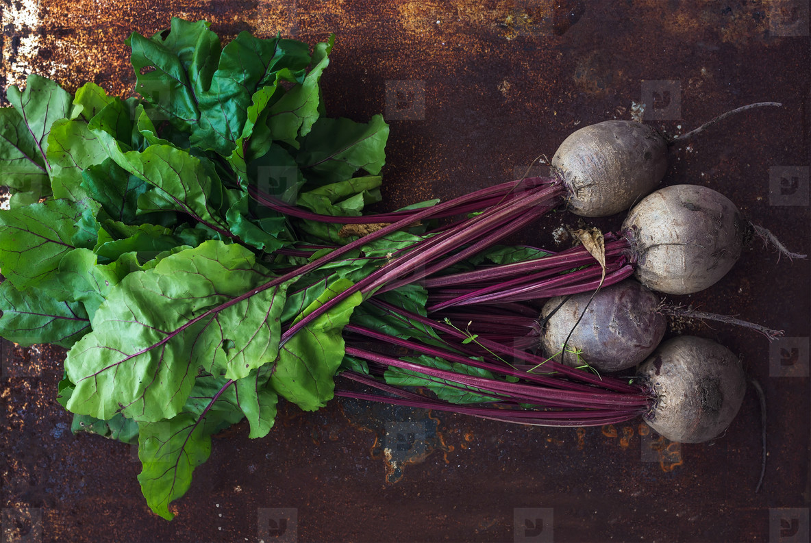 Bunch of fresh garden beetroot over grunge rusty metal backdrop