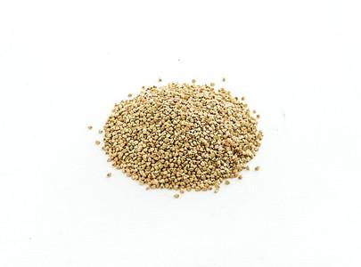 Green raw buckwheat groats on white background
