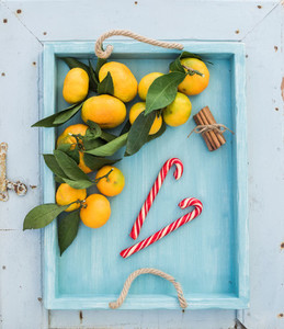 Fresh tangerines with leaves  cinnamon sticks and Christmas candy canes in turquoise tray over blue rustic wooden backdrop  top view