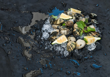 Fresh uncooked clams with lemon  herbs and spices on chipped ice over dark slate stone backdrop