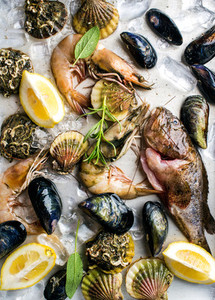 Fresh seafood with herbs and lemon on ice  Prawns  fish  mussels  scallops over steel metal tray