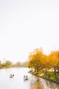 Pedal boats  Lumpini Park
