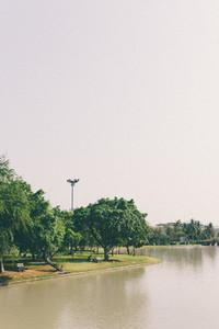 Lake in the spring park