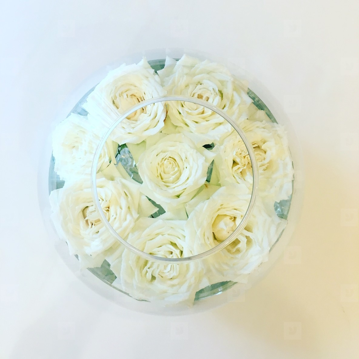 White roses in glass cup