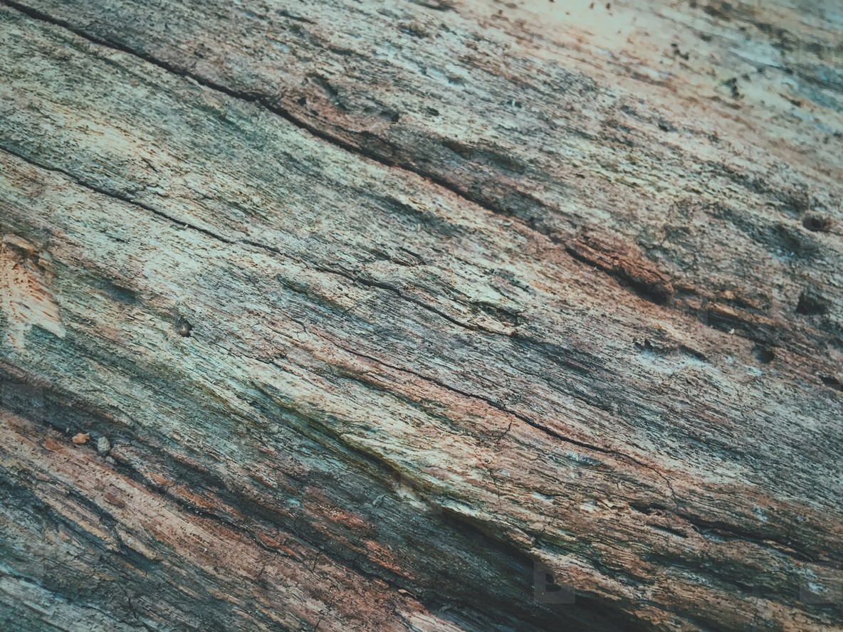 Gray woodgrain background