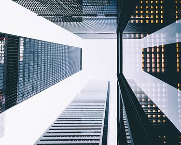 Toronto Look up