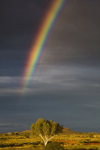 Under The Rainbow 03