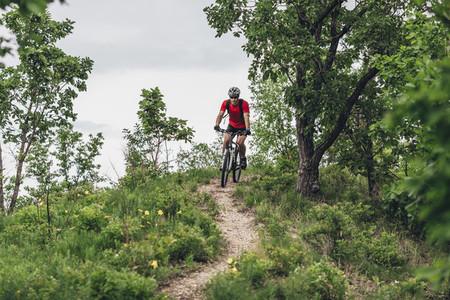 Mountain Dew Tracks 19