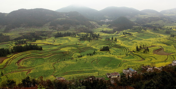 Terraced field in Yunnan  China