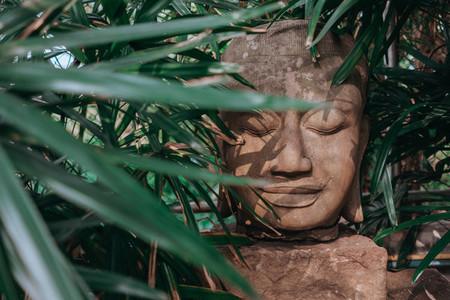 Botanical Garden 2