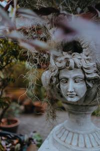 Botanical Garden 9