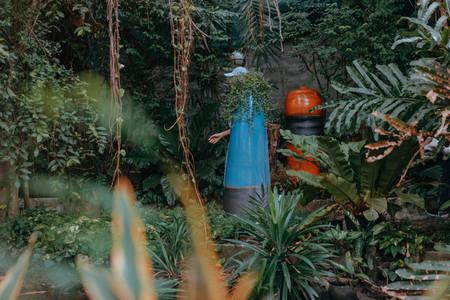 Botanical Garden 11