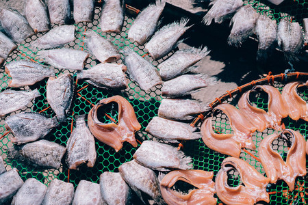 Fish Market 04