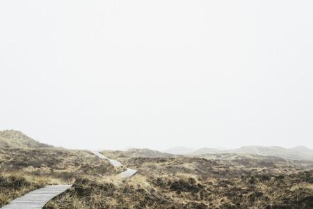 Misty Field 06