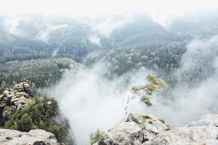 Misty Field 07