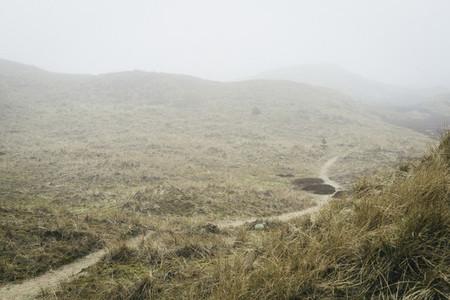 Misty Field 10