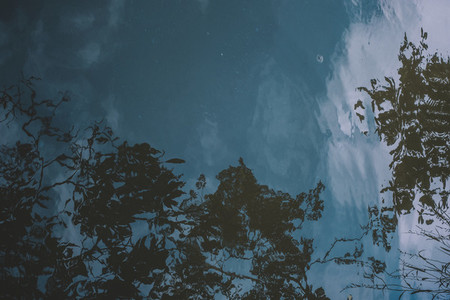 Water Reflections 02