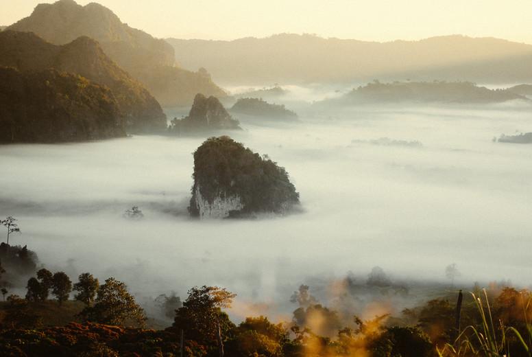 Morning mist of mountain