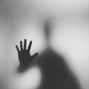 The silhouette of the hand