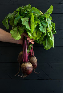 Bunch of fresh garden beetroot kept in man039 s hand  black wooden backdrop