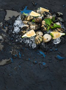 Fresh uncooked clams with lemon  herbs and spices on chipped ice over dark slate stone backdrop  top view  selective focus