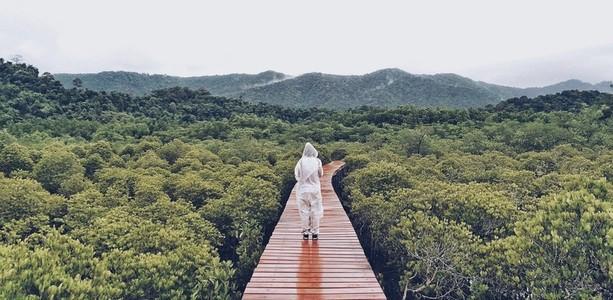Standing on a wooden foot bridge