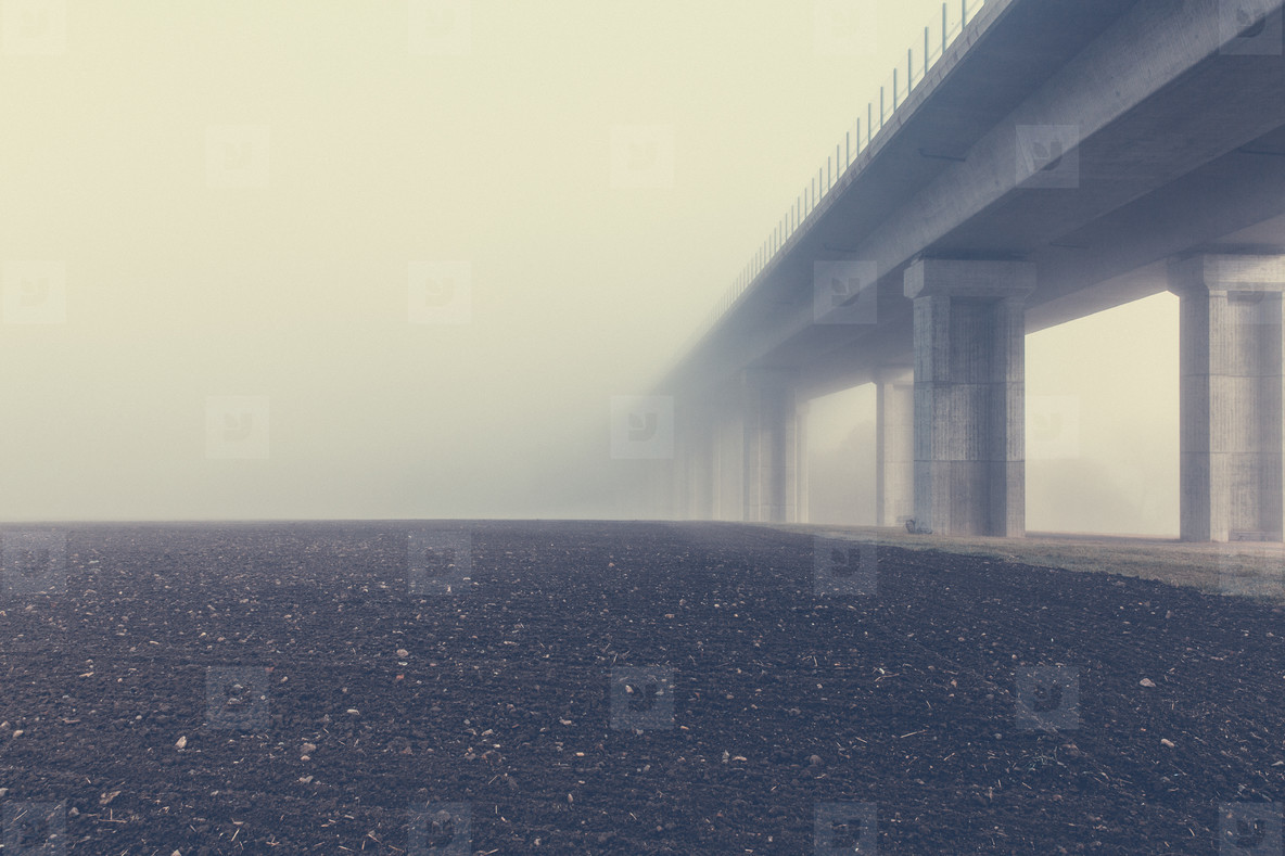 highway bridge architecture
