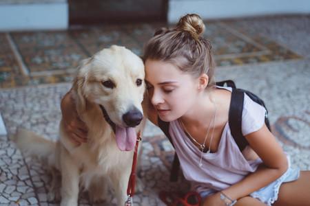 friendship Girl and Labrador