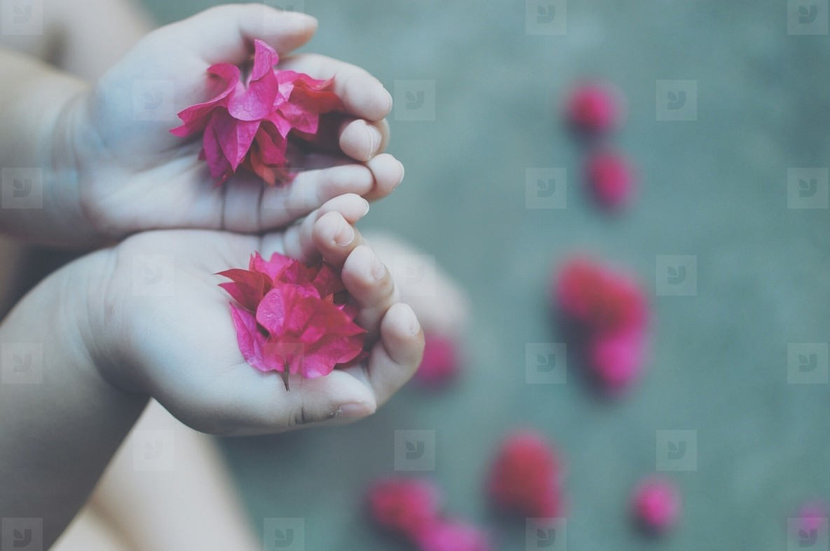 Child holding pink flowers