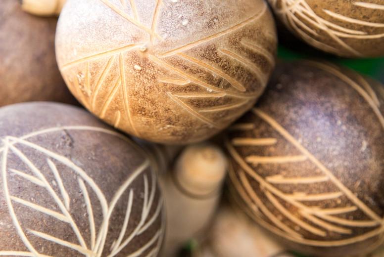 A closeup of maraca
